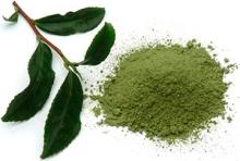 Instant High Grade Spray Dried Green Tea Powder for Drinking Afternoon Tea