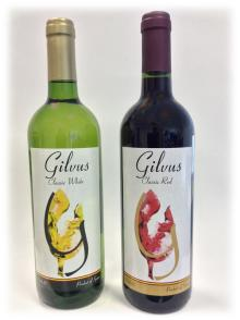 Gilvus Wine 75 cl glass bottle