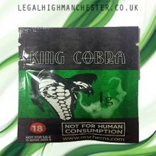 King Cobra Legal Potpourri..