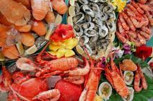 Seafood & Fish