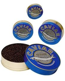Hackleback Caviar,Paddlefish Caviar,White Sturgeon Caviar,Sevruga Caviar