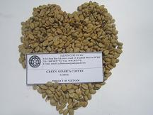 green Arabica coffee