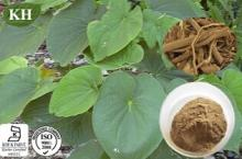 Kava Kava Extract: Kavalactones 30% by HPLC
