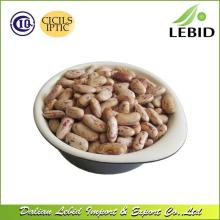 New Crop High Quality  LSKB  Long Shape