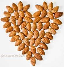 Hot sale for organic almond with high quality with ISO ,HACCP,