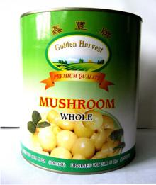 Canned Mushroom Whole in Tins Can