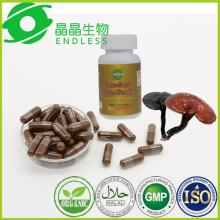 organic reishi  mushroom  spore powder capsule