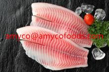 Frozen Tilapia Fillets High Quality from professional tilapia producer