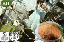 Epimedium Extract; Horny Goat Weed Extract Icariin 5%-98%