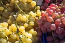 Fresh Grapes and all other Fruits for sale