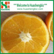 2018 China Delicious Fresh Navel Oranges