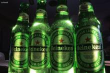 Heineken PACO Beer, Dutch Heineken Beer