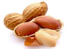 jumbo peanuts without shell