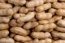 Blanched Granulated Peanuts