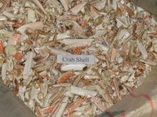 Crab shell,Shimp shell with low price
