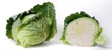 AD Cabbage