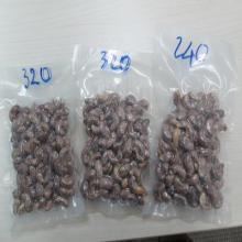 Salted   cashew   nut s