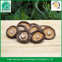 Chinese black mushrooms shittake mushrooms