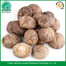 Whole Dried Shiitake Mushroom 1kg
