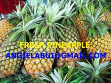 FRESH PINAPPLE, FROZEN PINEAPPLE