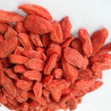 Selling goji berries 2018 new supply