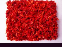 Dehydrated  Yidu  chilli/ pepper