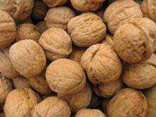 Top quality Walnut in shell and Without Shell