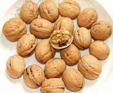 walnut importers buy walnut with 2015 best price best quality