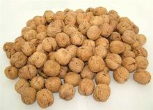 2015 crop high quality fresh red delicious fruit flavor- walnut