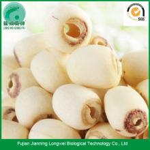 Good Quality Polished White Lotus Seed lotus paste