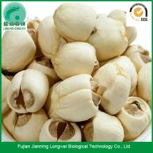 Jianning handmade white dried lotus seed