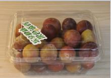 Disposable plastic food fruit clamshell container