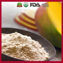 Health Food/Freeze Dried Mango Powder/Dried Mango/Sugar Free