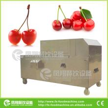 CE APPROVAL Fruit stoner, fruit stone removing machine, fruit destoner