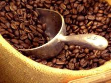 Copy of roasted arabica coffee bean