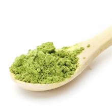 Health Food Green Tea Extract