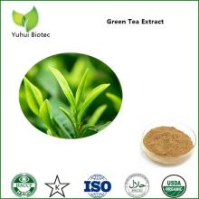 tea polyphenol,egcg,pure egcg