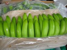 Grade A Green Cavendish Banana
