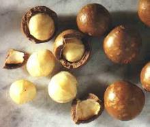 mecadamia nuts