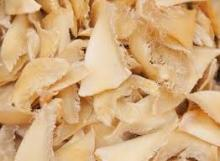 Dried Shark Bones