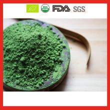 USDA ceremony matcha grade whole sale
