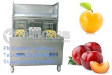 CL-I Plum Core Machine, Plum Core Removing Machine ,Plum Pitting machine