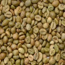 Robusta coffee beans grade 1 screen 16