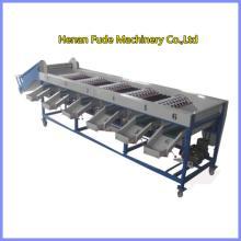Onion sorting machine