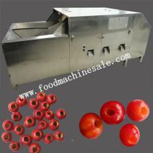 Automatic Dates Pitting Machine/Fruit Pitting Machine