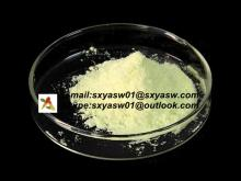 Natural Baicalin Baicalein Radix Scutellariae Extract