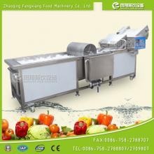 WA-2000 celery cleaning machine, celery cleaner, industrial celery cleaner