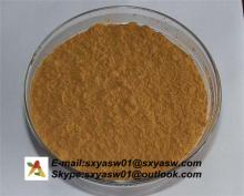 Natural Radix Isatidis Extract
