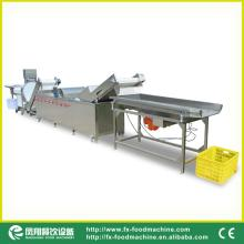 Vegetable cutting and washing line , vegetable processing line
