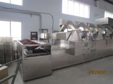 Microwave Food Drying Oven